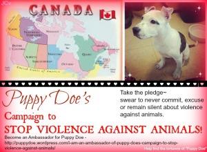Puppy Doe's Canadian Ambassadors.
