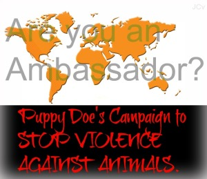 Please add your picture or name to become a an Ambassador for Puppy Doe's Campaign to Stop Violence Against Animals. Help Puppy Doe's Campaign to Stop Violence Against Animals Puppy Doe was brutally tortured and in her memory we want to help animals. Please post your picture to become an Ambassador of Puppy Doe's Campaign to Stop Violence Against Animals. Thankyou for helping to spread this very important issue worldwide.
