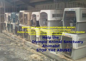https://www.causes.com/v2actions/1753539-save-the-olympic-animal-sanctuary-animals