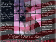 """Puppy Doe's ~ Campaign to Stop Violence Against Animals! YOU can help put a STOP to VIOLENCE against animals. Don't be afraid to """"Speak for those who can't!"""" Remember that you are one of many thousands of animal loving humans worldwide who stand beside you on this very important issue."""