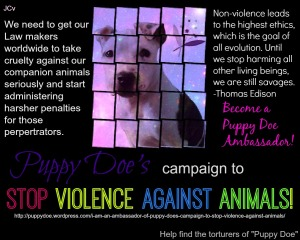 STOP VIOLENCE AGAINST ANIMALS! Are YOU a Puppy Doe Ambassador? Link: https://www.facebook.com/JusticeForPuppyDoe