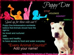EVERY ANIMAL COUNTS – please add your name to the list of Puppy Doe Ambassadors worldwide who are committed to the campaign STOP VIOLENCE AGAINST ANIMALS! http://puppydoe.wordpress.com/every-animal-counts-add-your-name/ https://www.facebook.com/JusticeForPuppyDoe Our long-term goal is to bring an end to all violence against animals. TAKE THE PLEDGE - swear to never commit, excuse, or remain silent about violence against animals.