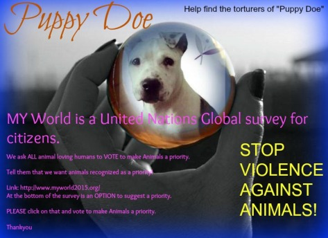 VOTE for Animals to be a priority! MY WORLD -United Nations Global survey